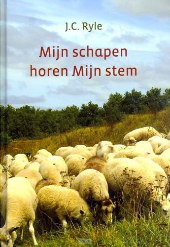 Mijn schapen horen Mijn stem
