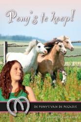 Pony's te koop!