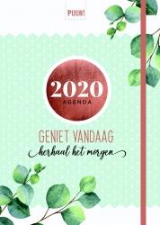 PUUR! agenda / 2020